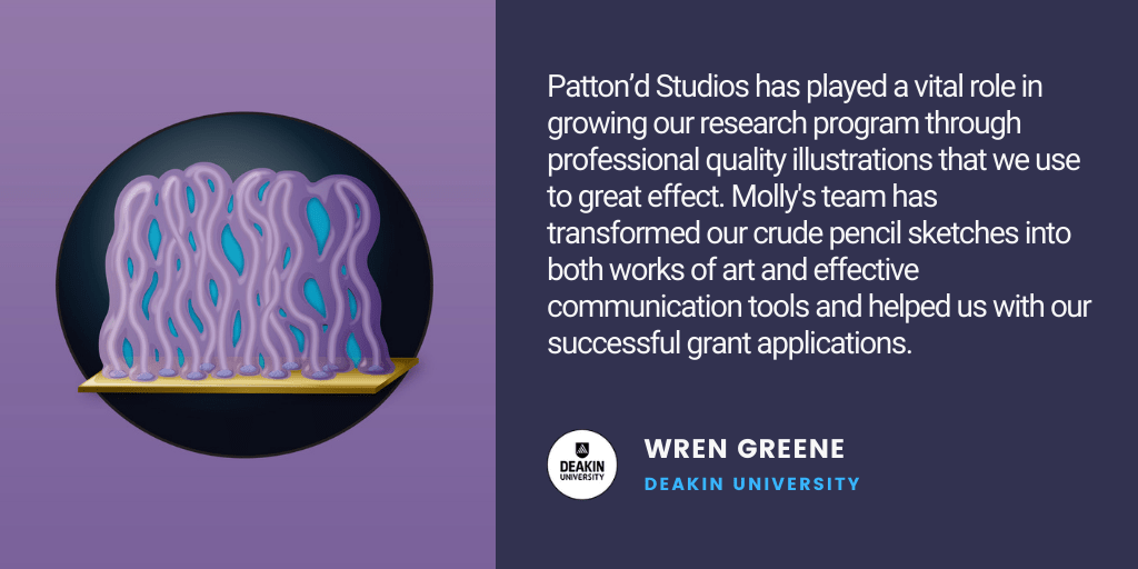 Testimonial: Patton'd Studios has played a vital role in growing our research program through professional quality illustrations that we use to great effect. Molly's team has transformed our crude pencil sketches into both works of art and effective communication tools and helped us with our successful grant applications. - Wren Greene, Deakin University